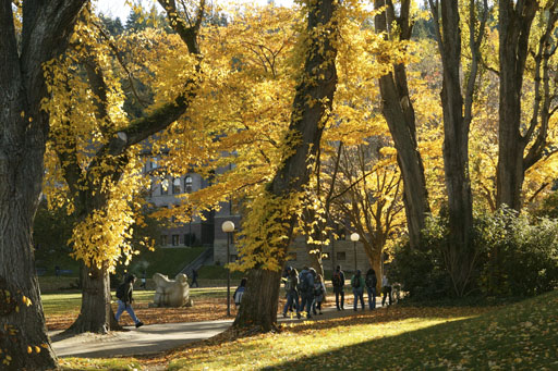 Students walk across campus, past trees with golden leaves.